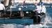 ProStart asennettuna USA:n America's Cup veneeseen