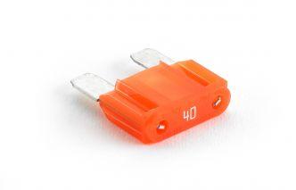 JL Audio MAXI™ lattasulake 40A
